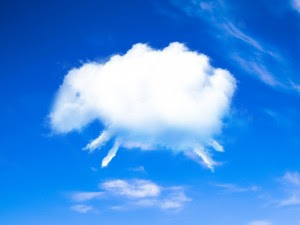 20161105203705-161105-nube-con-forma-de-oveja-para-conciliar-el-sueno-300x225.jpg